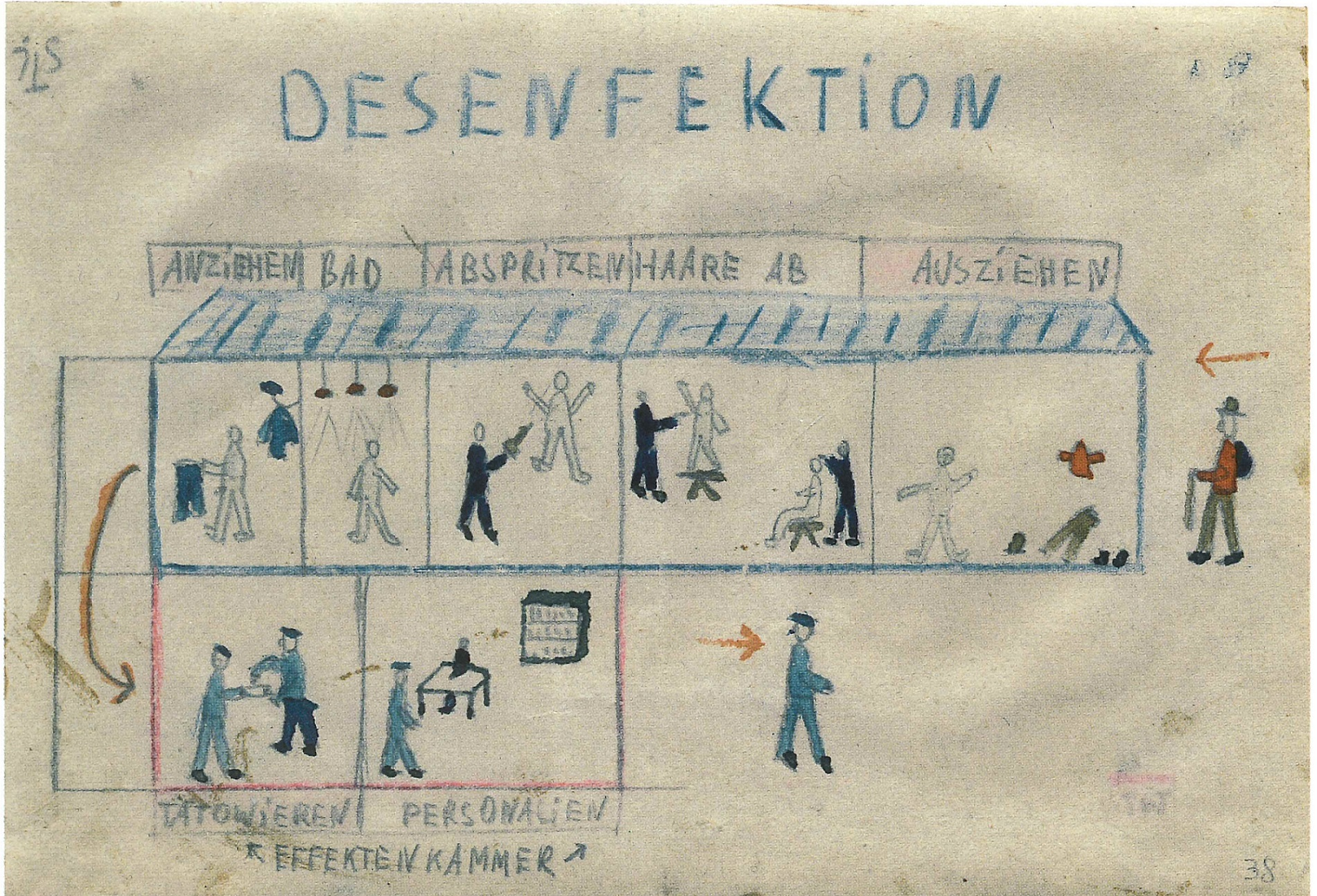 Désinfection- Thomas Geve